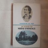 Pe urmele lui Mihai Eminescu - Augustin Z.N. Pop