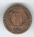 1985 Anul International al Tineretului - PACE - Insigna PROPAGANDA COMUNISTA