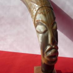 ARTA AFRICANA, CORN DE BIVOL SCULPTAT - Arta din Africa
