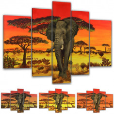 Tablou decor interior modern Africa elephant model BM7599