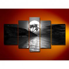 Set Tablouri Multicanvas 5 Piese Peisaj, Mare, Luna, Noapte,Palmieri pentru decor, panza canvas, rama lemn MDF, Alb Negru
