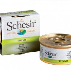 Schesir Ton în sup? 70g - Hrana pisici