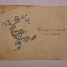 Carte postala circulata la Orsova in anul 1911, Printata
