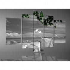 Set Tablouri Multicanvas 5 Piese Peisaj, Pietre in apa la malul marii, panza canvas, rama lemn MDF, alb negru