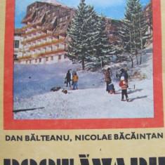 Muntii Postavaru (23) - Dan Balteanu, Nicolae Bacaintan - Carte Geografie