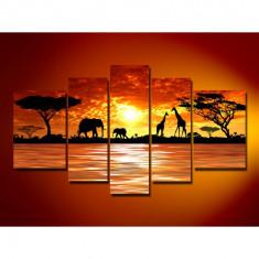 Tablou decor modern Africa wild elephants model BM861