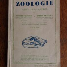 Manual vintage de Zoologie 1935 / R5P1S - Carte Zoologie