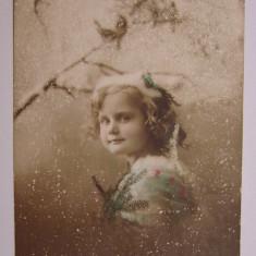 Carte postala circulata la Teregova in anul 1913 (jud. Caras-Severin) - Carte Postala Banat 1904-1918, Printata