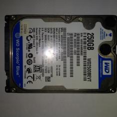 HDD Laptop 250 Gb SATA2/ Western Digital Blue / 2, 5 Inch /5400 Rpm (36K), 200-299 GB, 8 MB