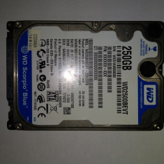 HDD Laptop 250 Gb SATA2/ Western Digital Blue / 2, 5 Inch /5400 Rpm (36K), 200-299 GB, 8 MB