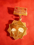 Insigna - Slava Trupelor Desant - sovietice - Parasutisti , h= 5,5 cm