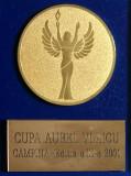 CUPA AUREL VLAICU - CAMPINA Editia a III a - Medalie AVIATIE la Cutie