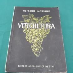 VITICULTURA / TH. BEJAN, V. DVORNIC/1954