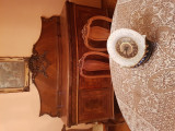 Sufragerie vieneza 1890