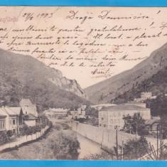 CARTE POSTALA PERIOADA AUSTROUNGARA - BAILE HERCULANE - 1903 - Carte Postala Banat pana la 1904, Circulata, Printata