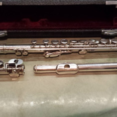 instrument muzical