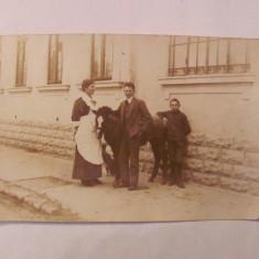 PVM - Ilustrata BUCURESTI oameni cal catel 1917 necirculata