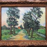 Drumul spre casa - semnat Padina - Pictor roman, Peisaje, Ulei, Altul