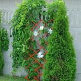 Spalier de gradina din plastic-teracota - Carte gradinarit