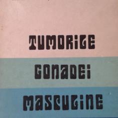 GEORGETA TARABUTA CORDUN, NICANOR MINECAN: TUMORILE GONADEI MASCULINE - Carte Oncologie