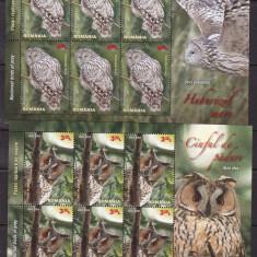 Romania 2013 fauna pasari rapitoare minicoli MNH w49 - Timbre Romania, Nestampilat