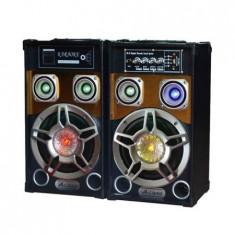 Boxe active Ailiang 801, USB, radio FM - Boxa activa
