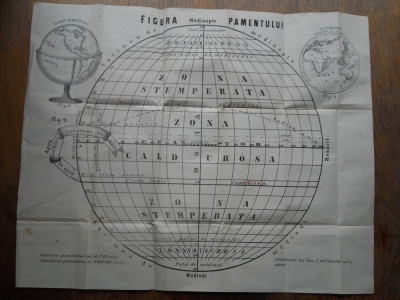 FIGURA PAMENTULUI, 1863 - AFIS foto