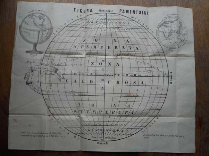 FIGURA PAMENTULUI, 1863 - AFIS foto mare