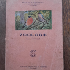 ZOOLOGIE, CLASA 1-A SECUNDARA, 1930 //frumos ilustrata - Carte Zoologie