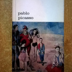 Antonina Vallentin – Pablo Picasso