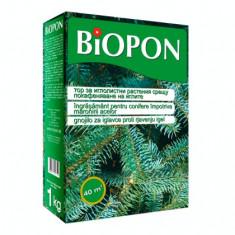 BIOPON ingrasamant pentur conifere anti-ingalbenire ace 1 kg
