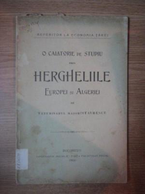 O CALATORIE DE STUDIU PRIN HERGHELIILE EUROPEI SI ALGERIEI DE VETERINARUL MAIOR P. STAVRESCU, BUC. 1906 foto