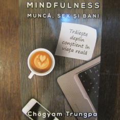 Mindfulness: munca, sex si bani - Chogyam Trungpa - Carte dezvoltare personala