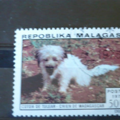 MALAGASY 1974 – CAINE RASA BICHON, timbru stampilat V81 - Timbre straine