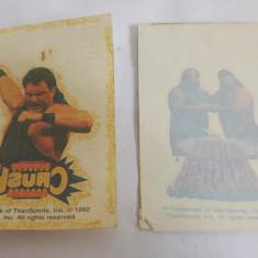 2 tatuaje vechi WWE wrestling 1992 TitanSports