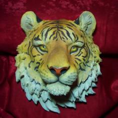 Aplica decor perete, cap tigru bengalez, colectie, cadou, vintage