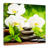Tablou canvas patrat orhidee alba 80x80cm