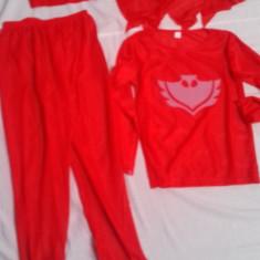 Costum Bufnita 6-8 ani