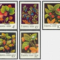 URSS 1982 - fructe de padure, serie neuzata - Microscop