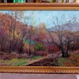 Pictura de Podolyak Vilmos - peisaj,  in padure in munti