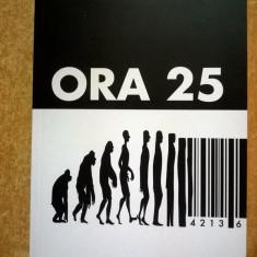 C. Virgil Gheorghiu - Ora 25 {Sens, 2017}