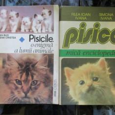 Pisicile o enigma a lumii animale + Pisica mica enciclopedie