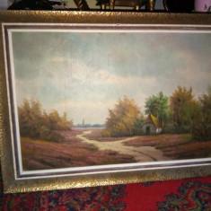 Un tablou vechi in ulei o lucrare de foarte buna calitate cu o rama din lemn