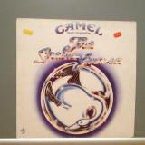 CAMEL - THE SNOW GOOSE (1975/DECCA/RFG) - Vinil/Impecabil (NM)