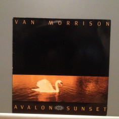 VAN MORRISON - AVALON SUNSET (1989/POLYDOR/RFG) - Vinil/Rar/Bues/Impecabil (NM+) - Muzica Blues