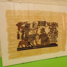 Superb PAPIRUS AUTENTIC, pictat manual, SEMNAT, sticla protectie, Egipt - Arta din Africa