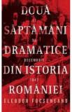 Două săptămâni dramatice din istoria României, Eleodor Focseneanu