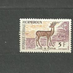 CAMERUN 1962 - ANTILOPA, timbru nestampilat N77 - Timbre straine