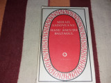 HANUL ANCUTEI BALTAGUL/TD