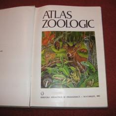 ATLAS ZOOLOGIC - 1983 (format mare)